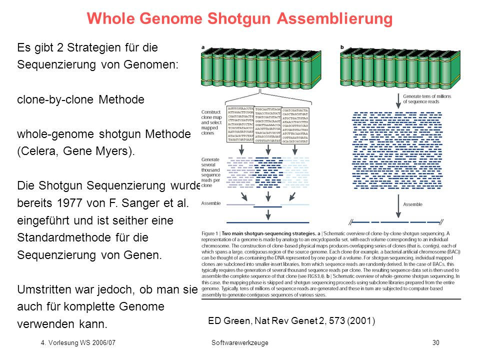 Whole Genome Shotgun Assemblierung