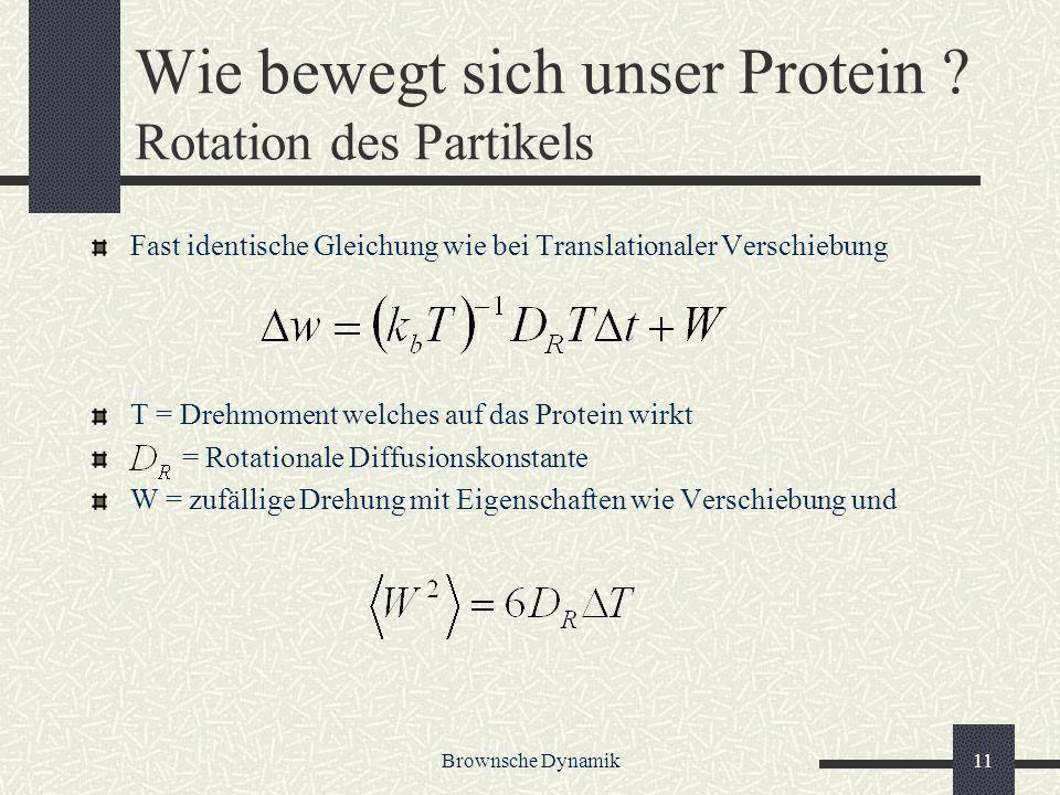 Wie bewegt sich unser Protein Rotation des Partikels