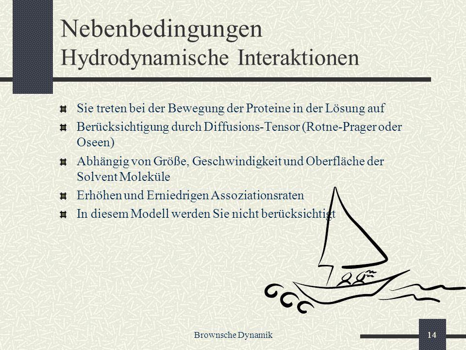 Nebenbedingungen Hydrodynamische Interaktionen