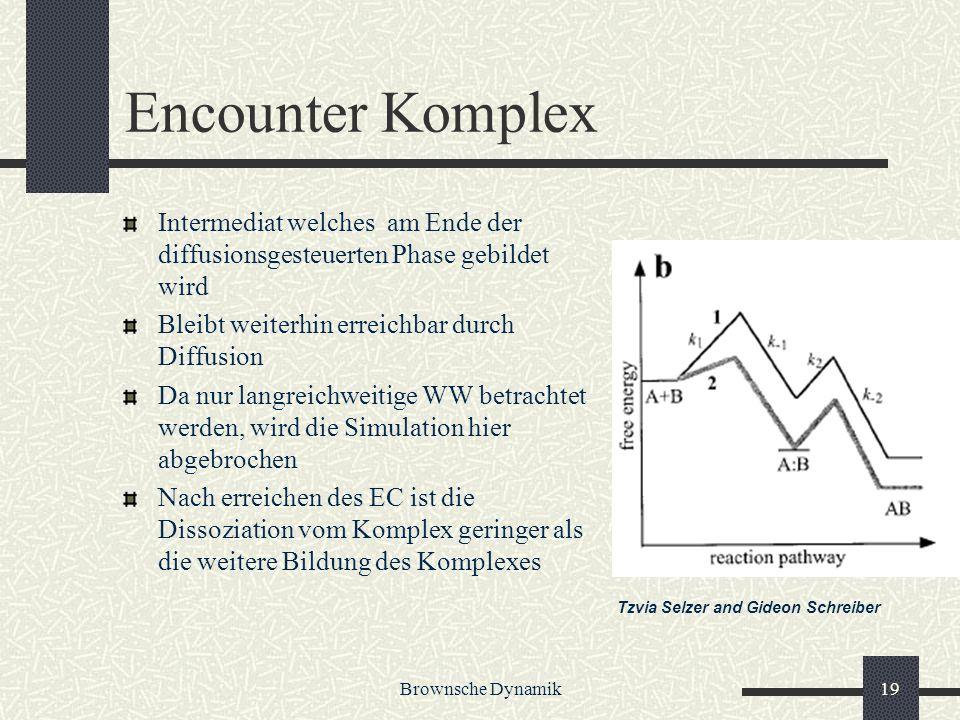 Encounter Komplex Intermediat welches am Ende der diffusionsgesteuerten Phase gebildet wird. Bleibt weiterhin erreichbar durch Diffusion.