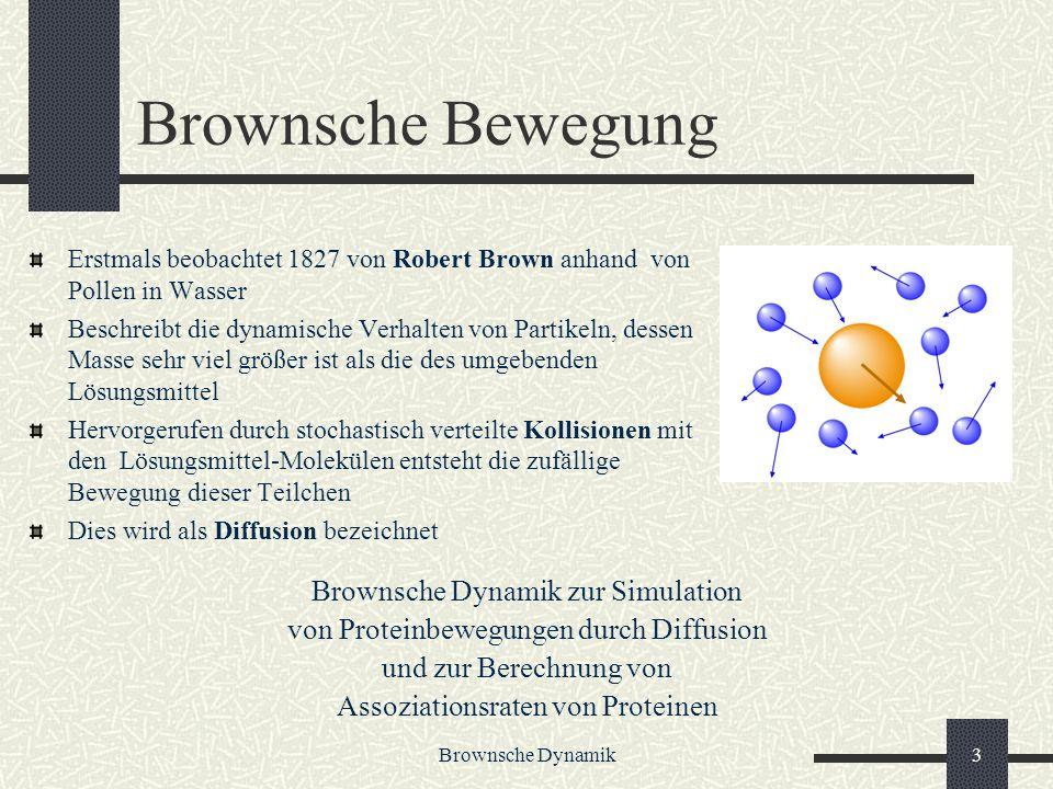 Brownsche Bewegung Brownsche Dynamik zur Simulation