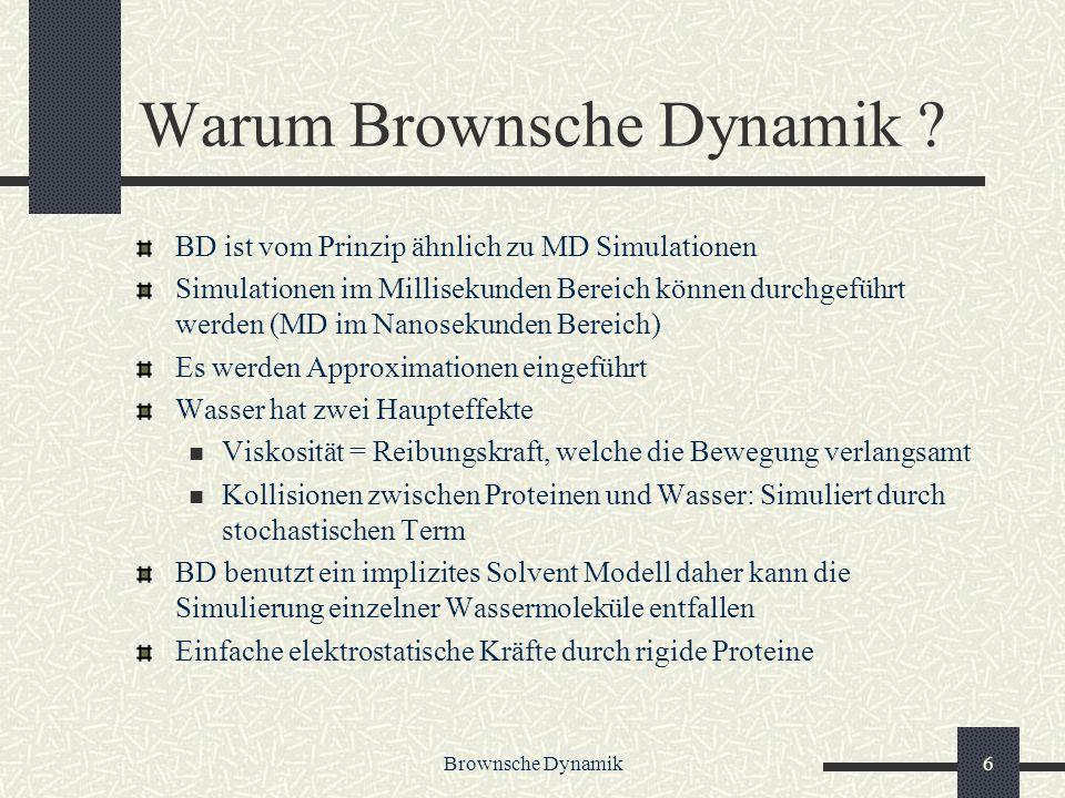 Warum Brownsche Dynamik