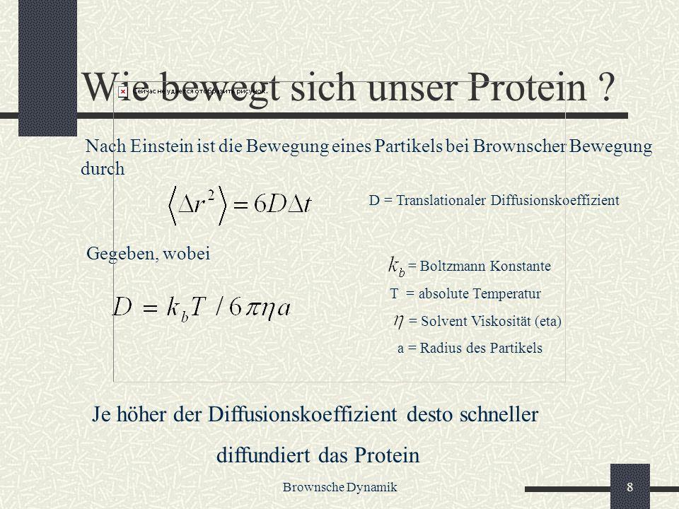 Wie bewegt sich unser Protein