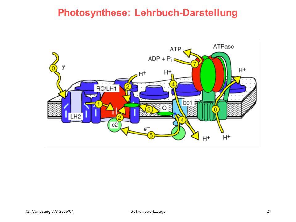 Photosynthese: Lehrbuch-Darstellung