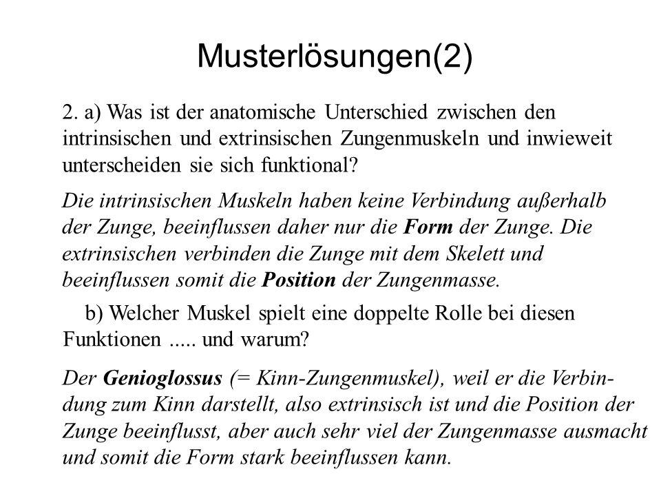 Musterlösungen(2)