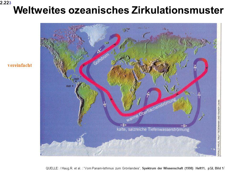 Weltweites ozeanisches Zirkulationsmuster