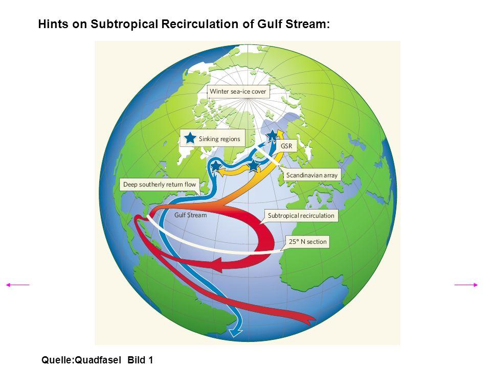 Hints on Subtropical Recirculation of Gulf Stream: