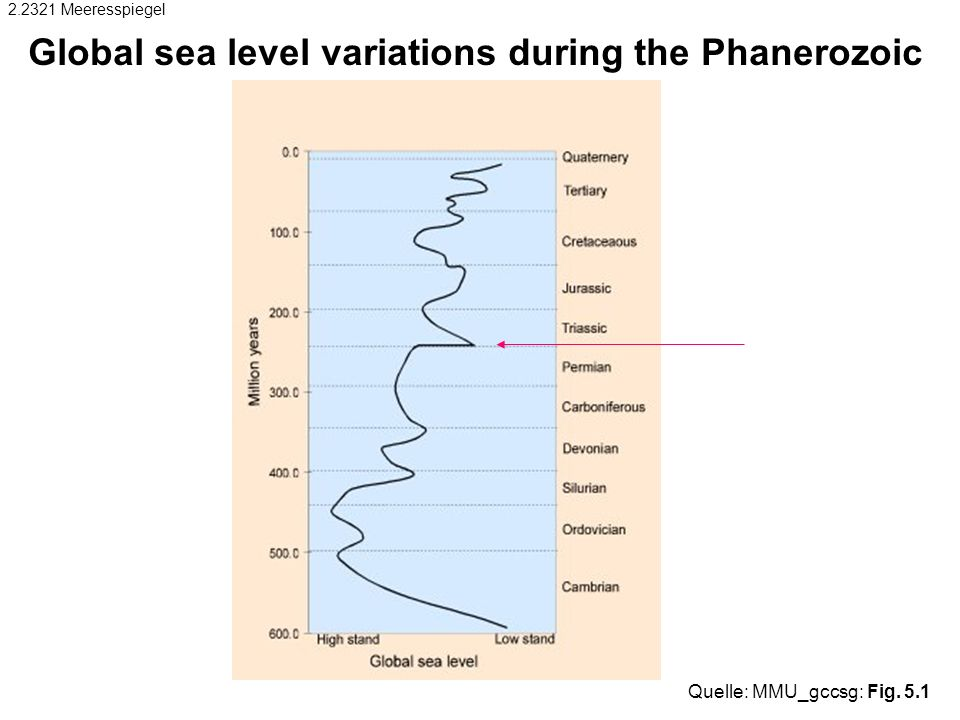 Global sea level variations during the Phanerozoic