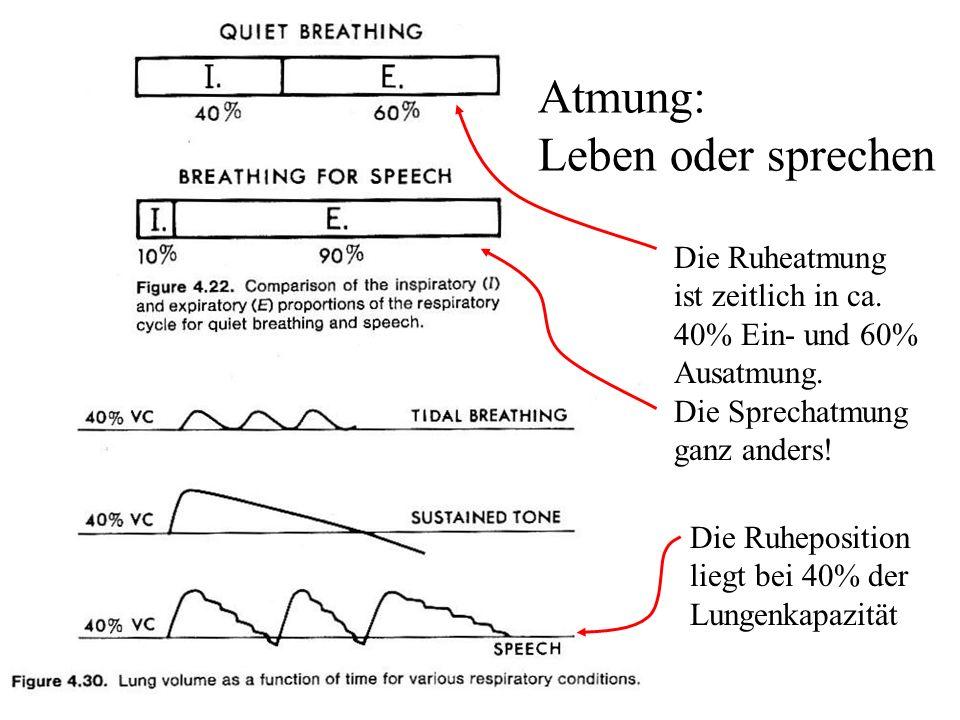Atmung: Leben oder sprechen