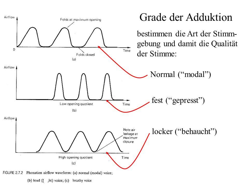 Grade der Adduktion bestimmen die Art der Stimm- gebung und damit die Qualität der Stimme: Normal ( modal )