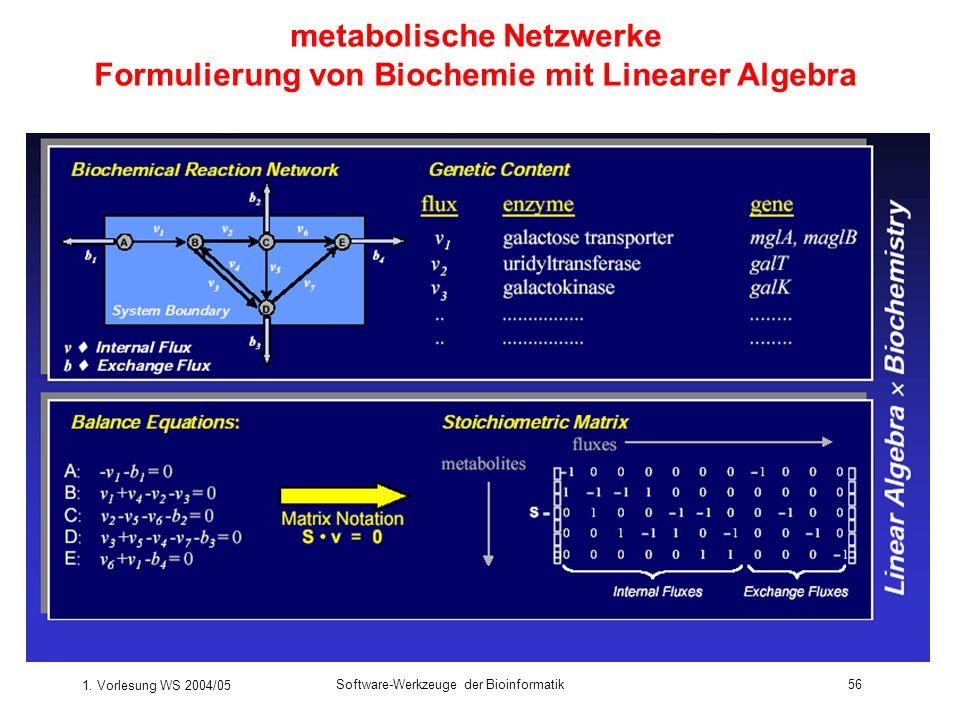 metabolische Netzwerke Formulierung von Biochemie mit Linearer Algebra
