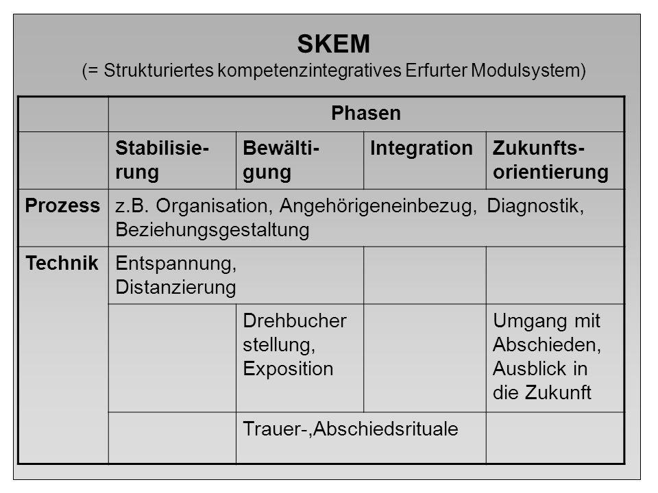 SKEM (= Strukturiertes kompetenzintegratives Erfurter Modulsystem)