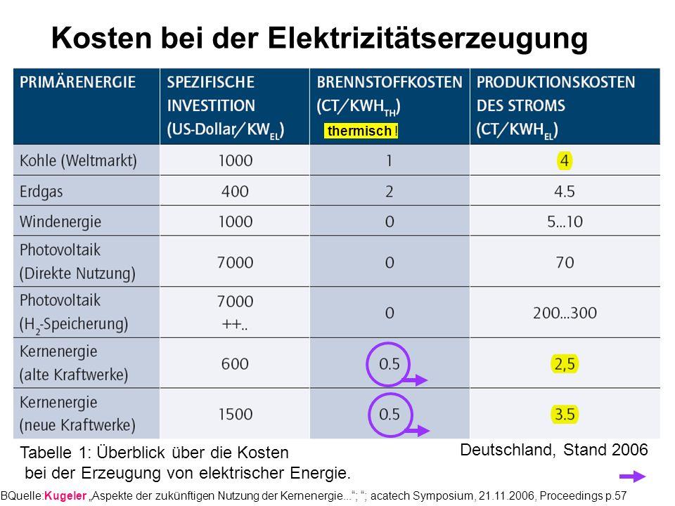 Kosten bei der Elektrizitätserzeugung
