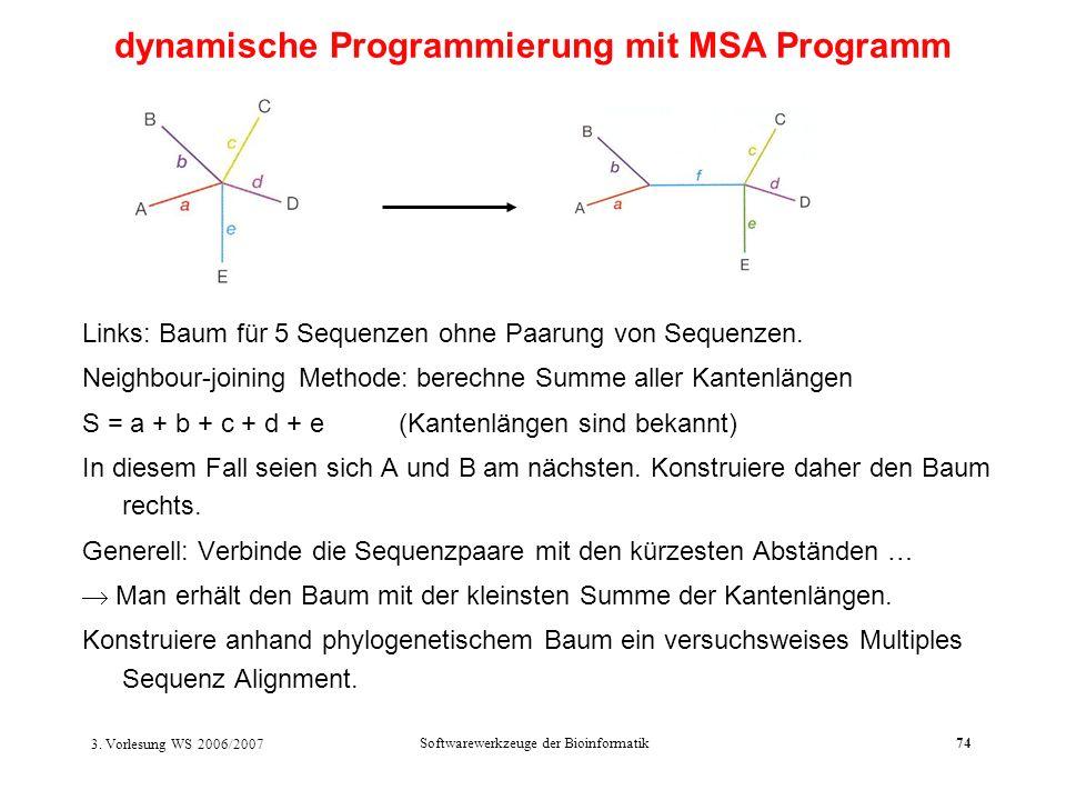 dynamische Programmierung mit MSA Programm