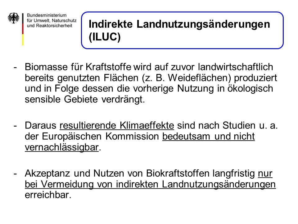 Indirekte Landnutzungsänderungen (ILUC)