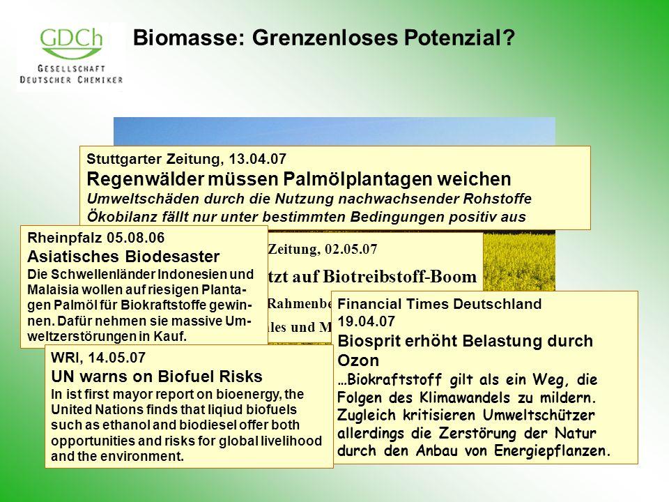 Biomasse: Grenzenloses Potenzial