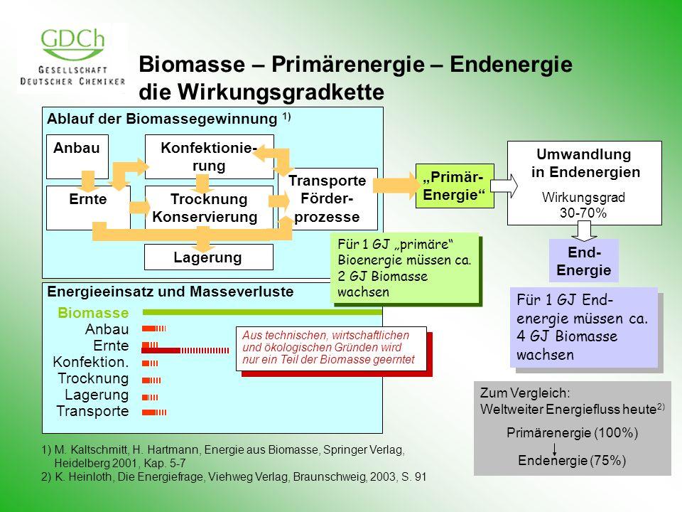 Biomasse – Primärenergie – Endenergie die Wirkungsgradkette