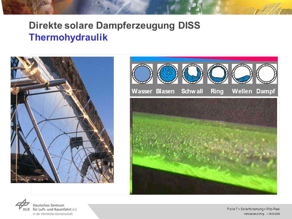 Direkte solare Dampferzeugung DISS Thermohydraulik