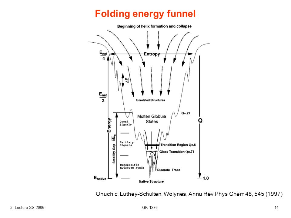 Folding energy funnel Onuchic, Luthey-Schulten, Wolynes, Annu Rev Phys Chem 48, 545 (1997) 3. Lecture SS 2006.