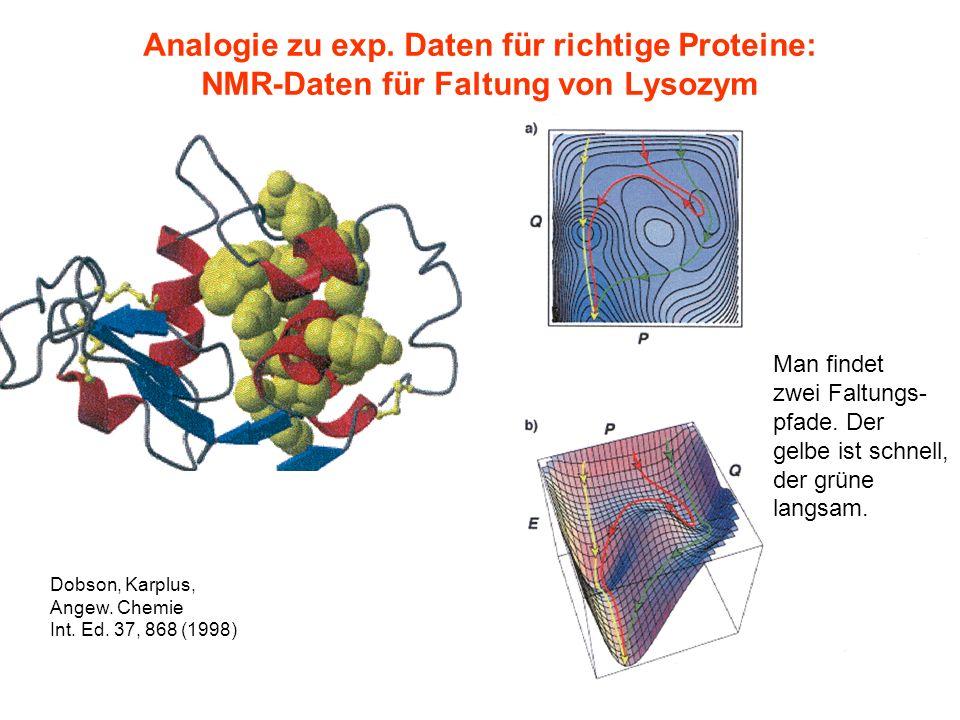 Analogie zu exp. Daten für richtige Proteine: