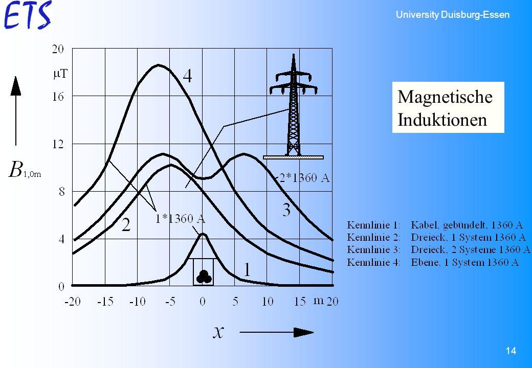 Magnetische Induktionen