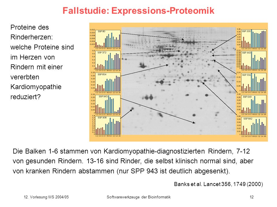 Fallstudie: Expressions-Proteomik