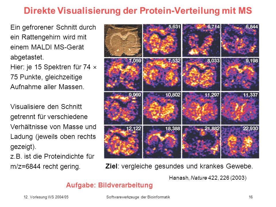 Direkte Visualisierung der Protein-Verteilung mit MS