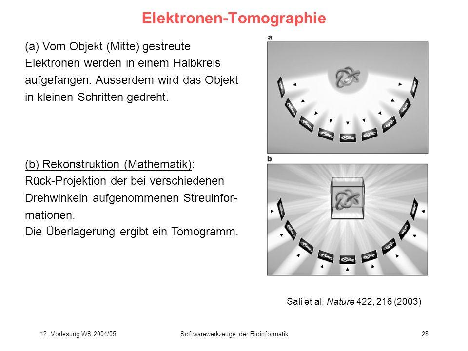 Elektronen-Tomographie