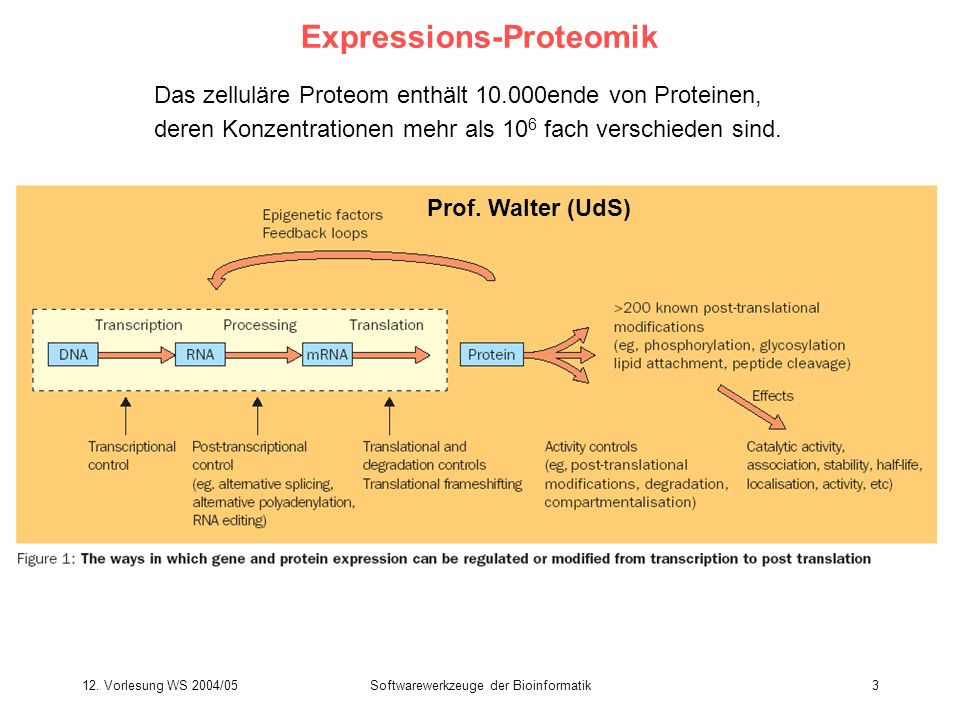 Expressions-Proteomik