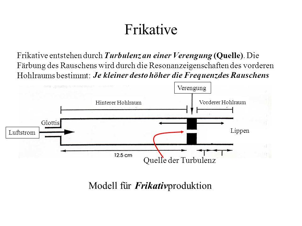 Frikative Modell für Frikativproduktion