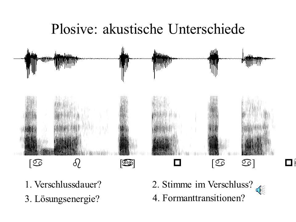 Plosive: akustische Unterschiede