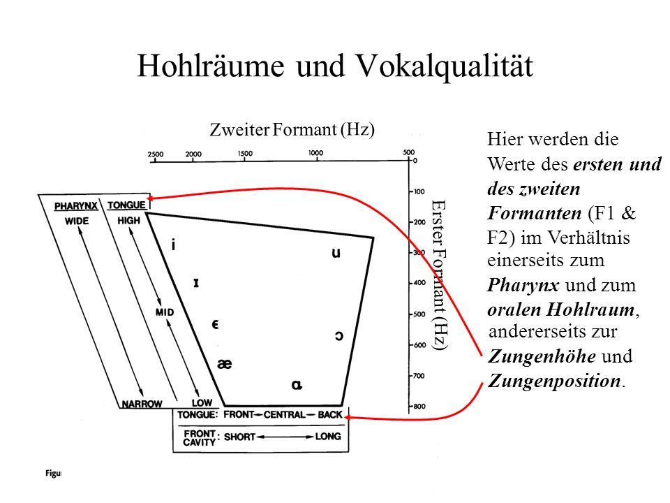 Hohlräume und Vokalqualität