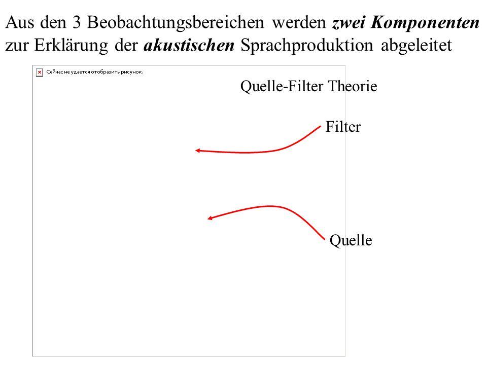 Aus den 3 Beobachtungsbereichen werden zwei Komponenten zur Erklärung der akustischen Sprachproduktion abgeleitet