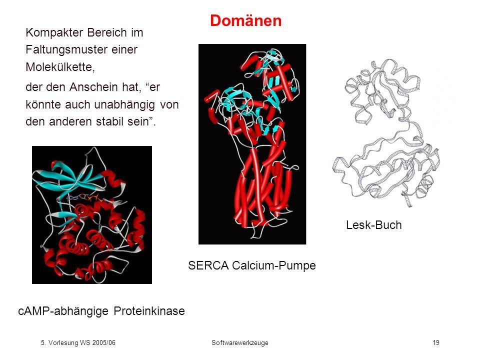 Domänen Kompakter Bereich im Faltungsmuster einer Molekülkette,