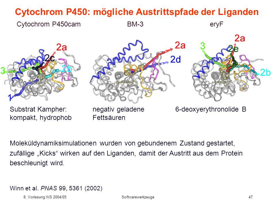 Cytochrom P450: mögliche Austrittspfade der Liganden