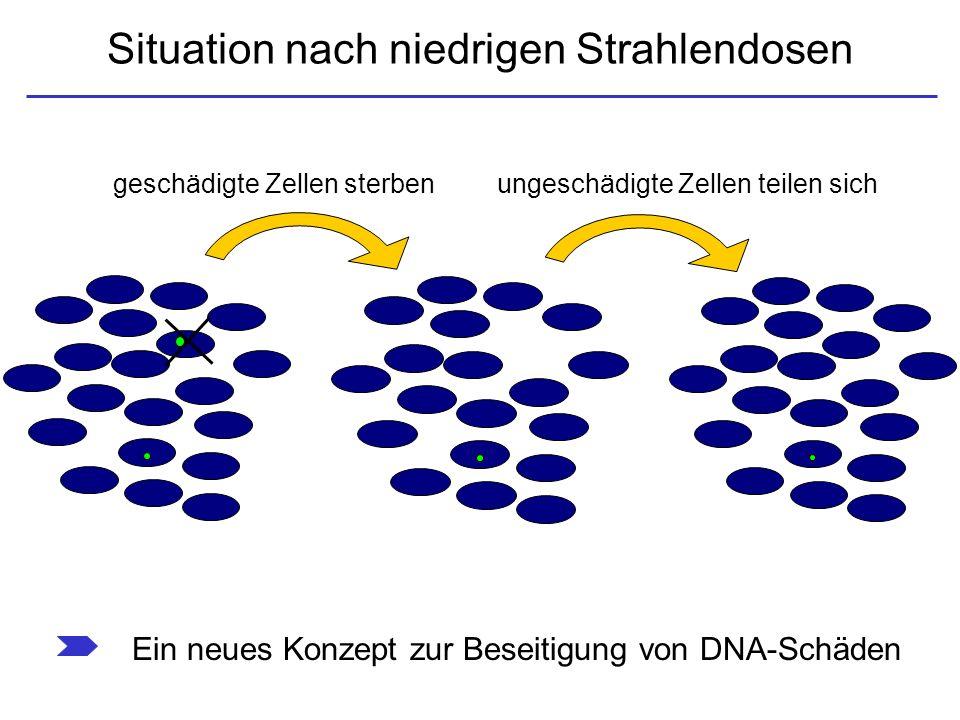 Situation nach niedrigen Strahlendosen