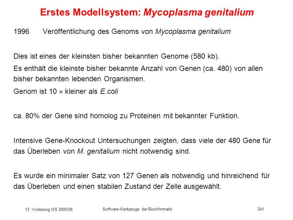 Erstes Modellsystem: Mycoplasma genitalium
