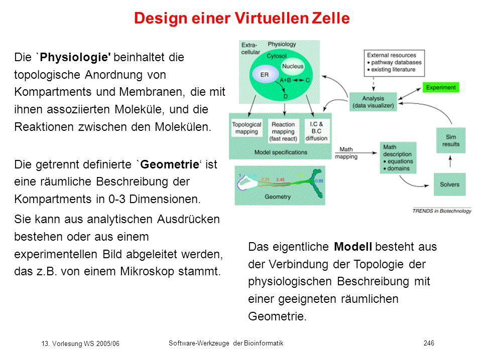 Design einer Virtuellen Zelle