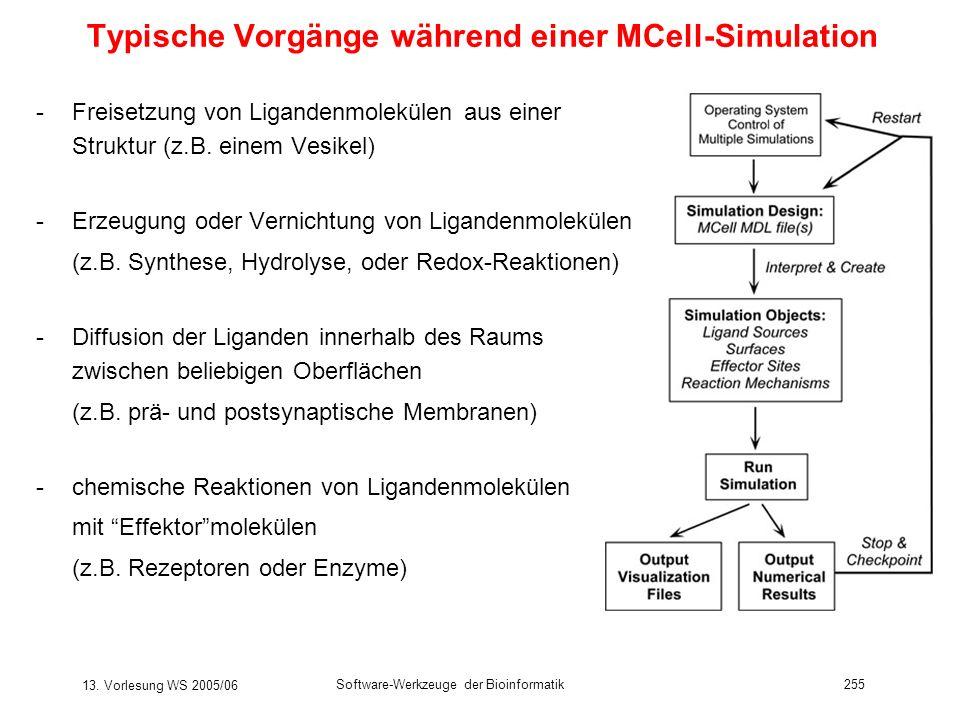 Typische Vorgänge während einer MCell-Simulation