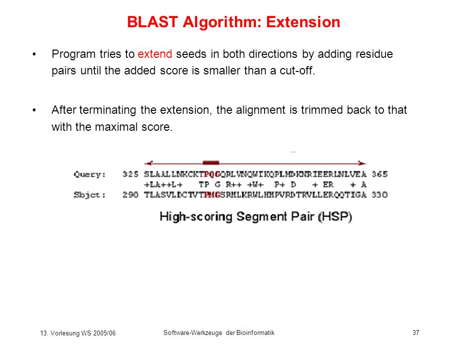 BLAST Algorithm: Extension