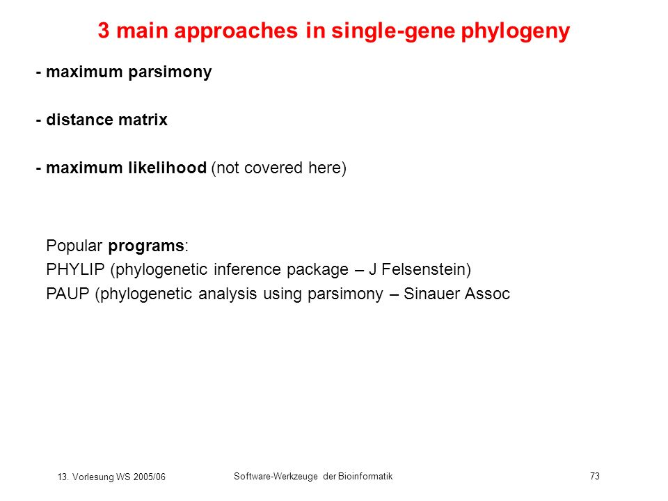 3 main approaches in single-gene phylogeny