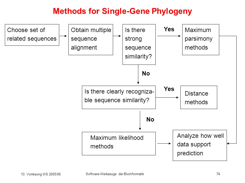Methods for Single-Gene Phylogeny