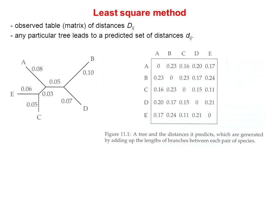 Least square method - observed table (matrix) of distances Dij