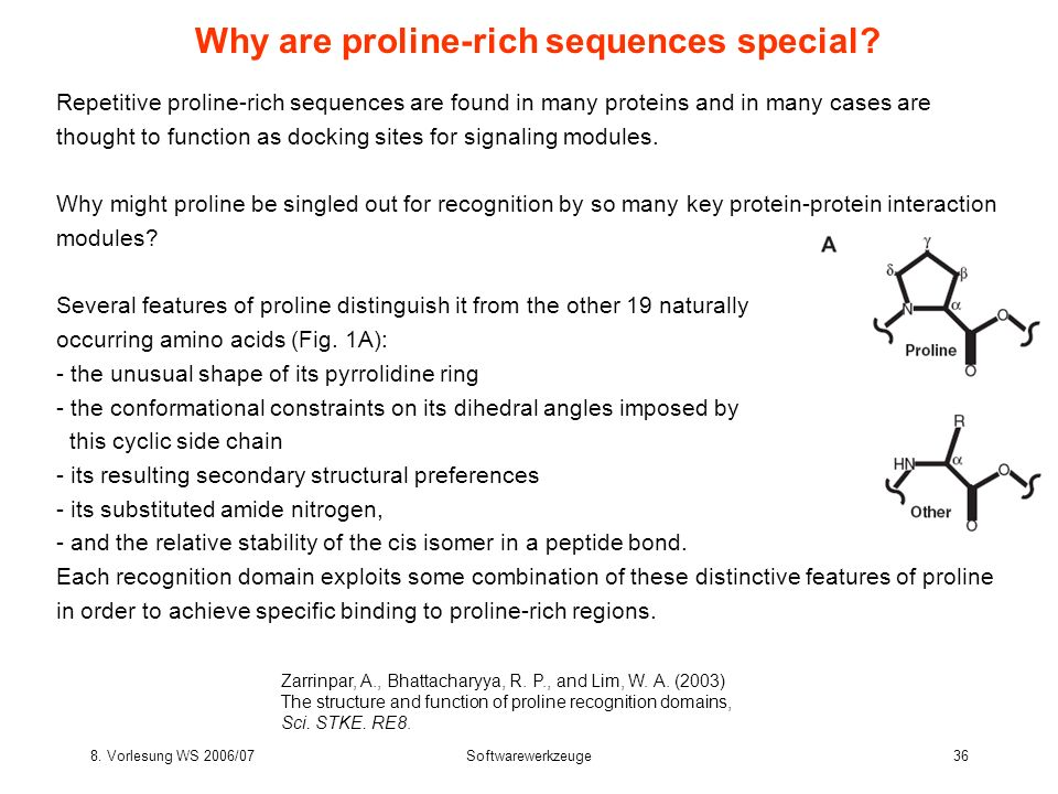 Why are proline-rich sequences special