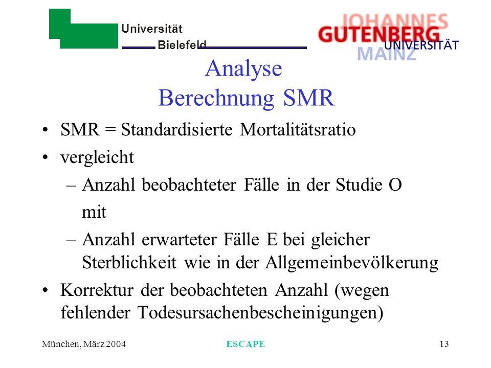Analyse Berechnung SMR
