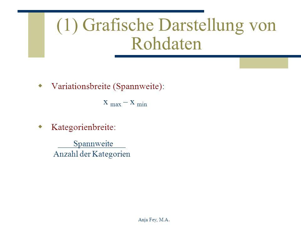 (1) Grafische Darstellung von Rohdaten