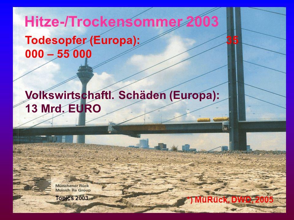 Hitze-/Trockensommer 2003