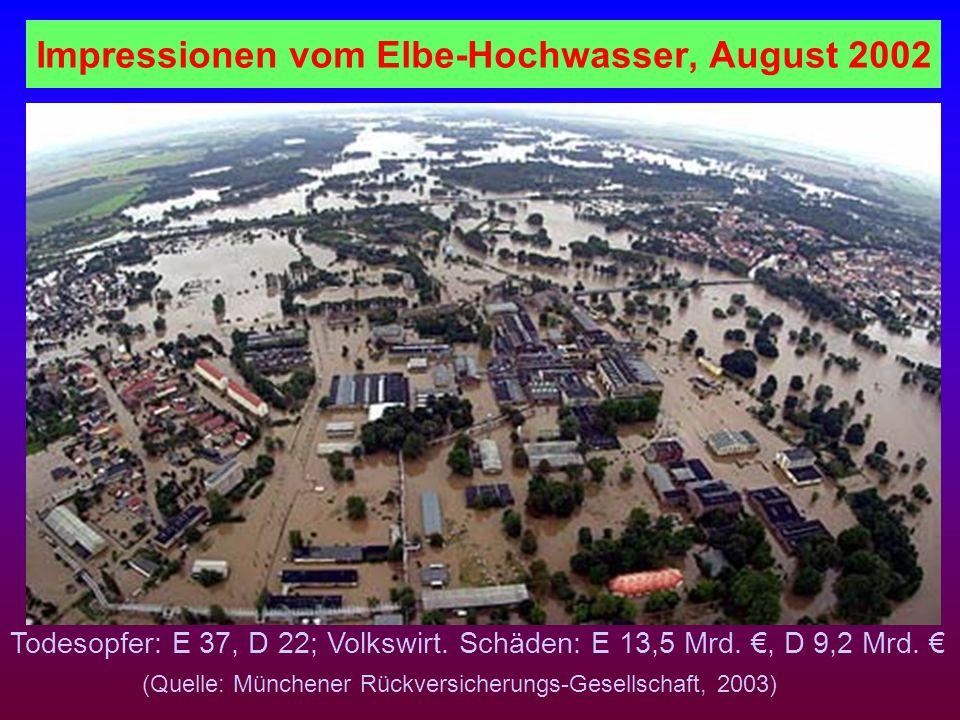 Impressionen vom Elbe-Hochwasser, August 2002