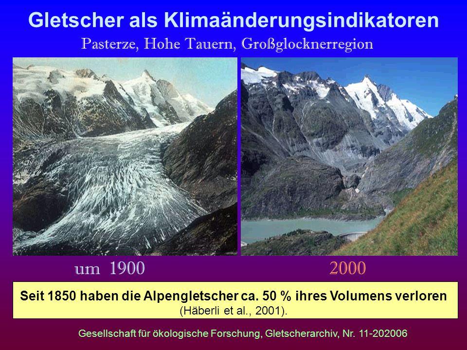 Gletscher als Klimaänderungsindikatoren