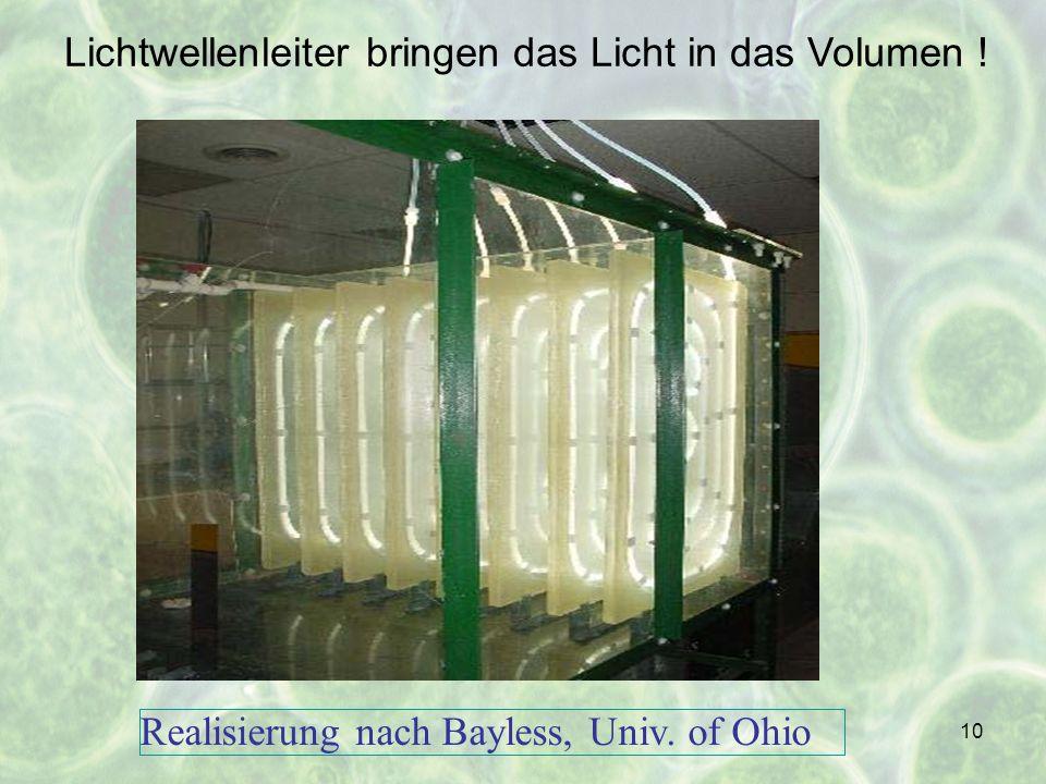 Lichtwellenleiter bringen das Licht in das Volumen !